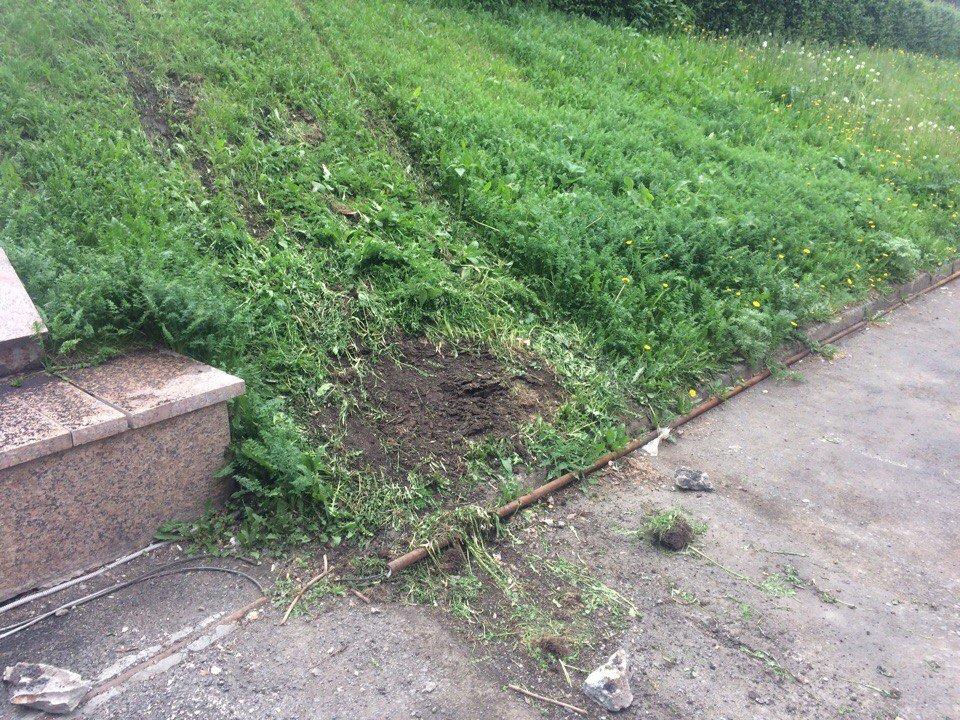 Автоледи устроила бедлам на парковке Челябинска (видео)